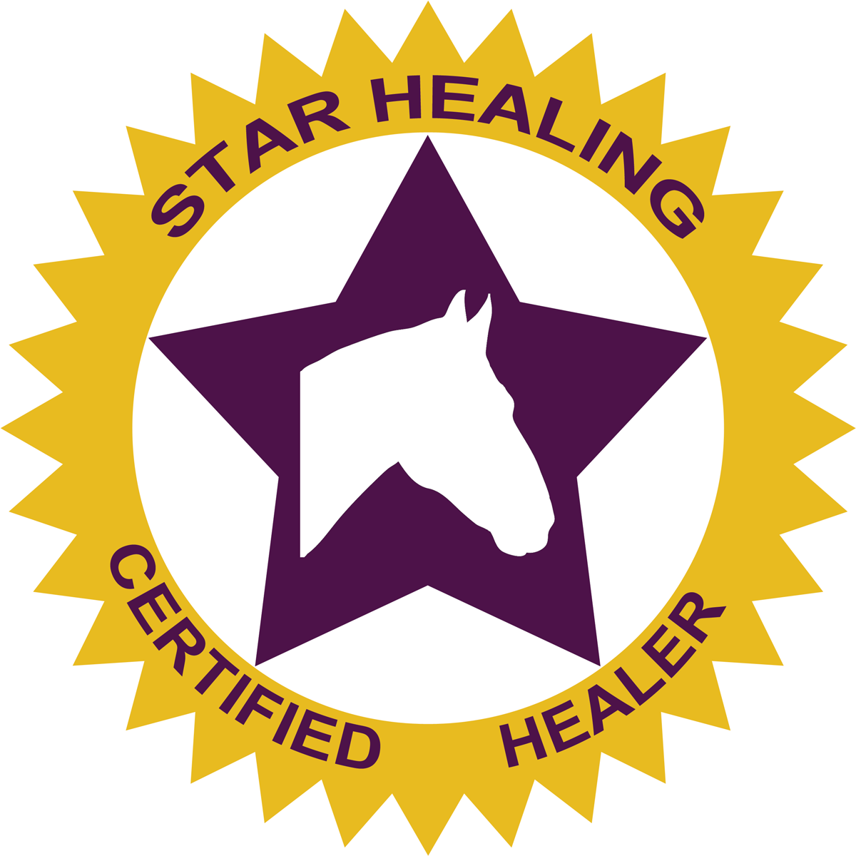 Star Healing Energy Certification - Equine