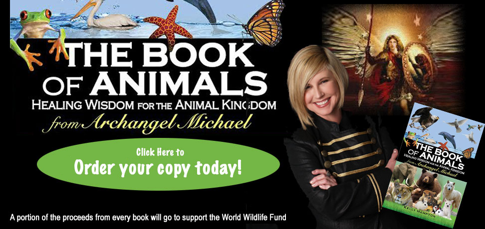 The Book of Animals - Healing Wisdom from the Animal Kingdom - from Archangel Michael - Click Here to Order your Copy Today!