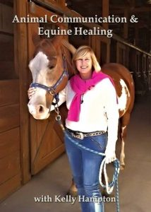Animal communication and equine healing