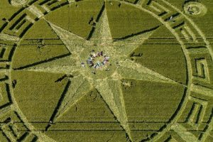 Glastonbury Crop Circle