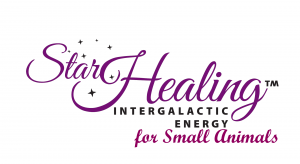 Star Healing intergalactice energy for small animals logo